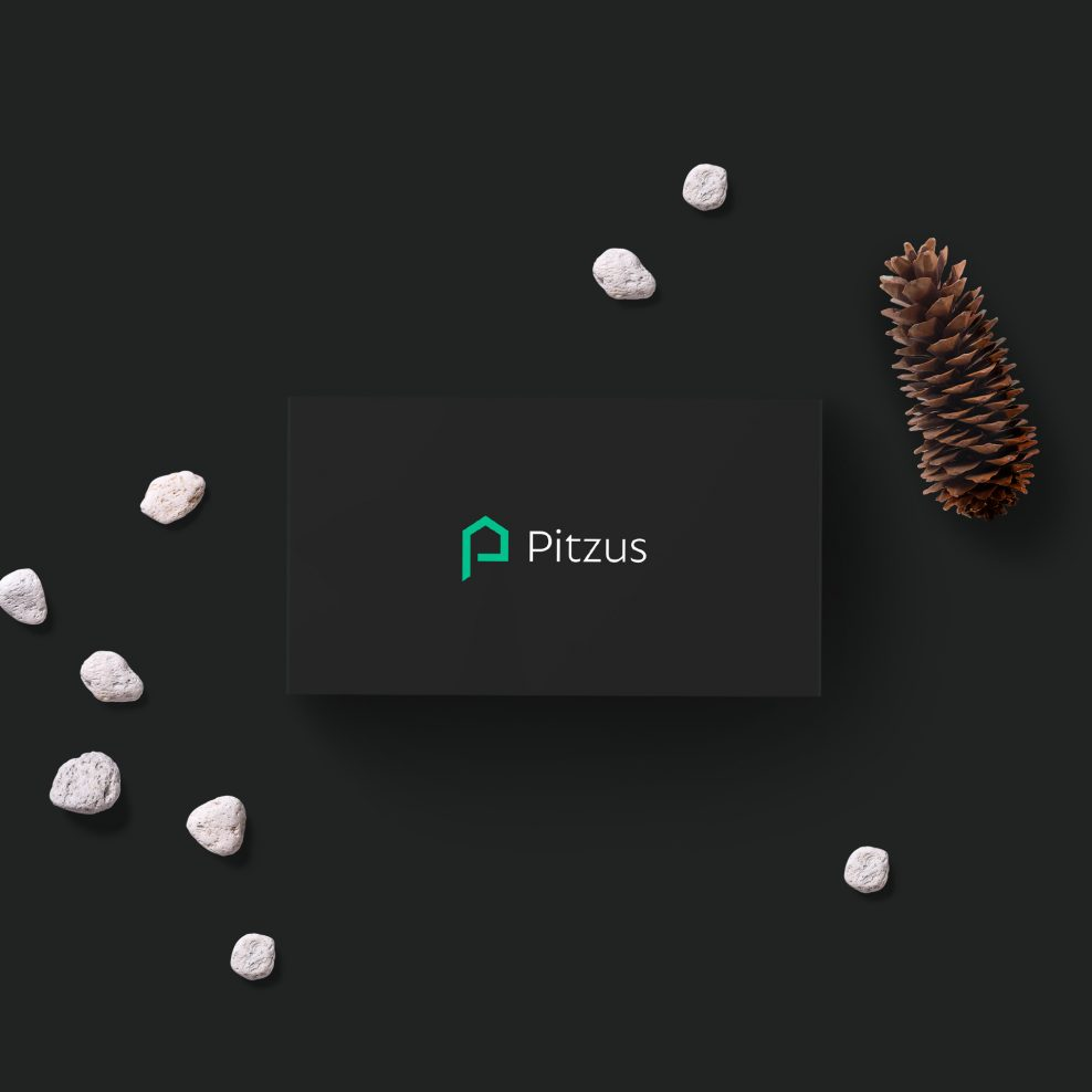 Cover Pitzus Group