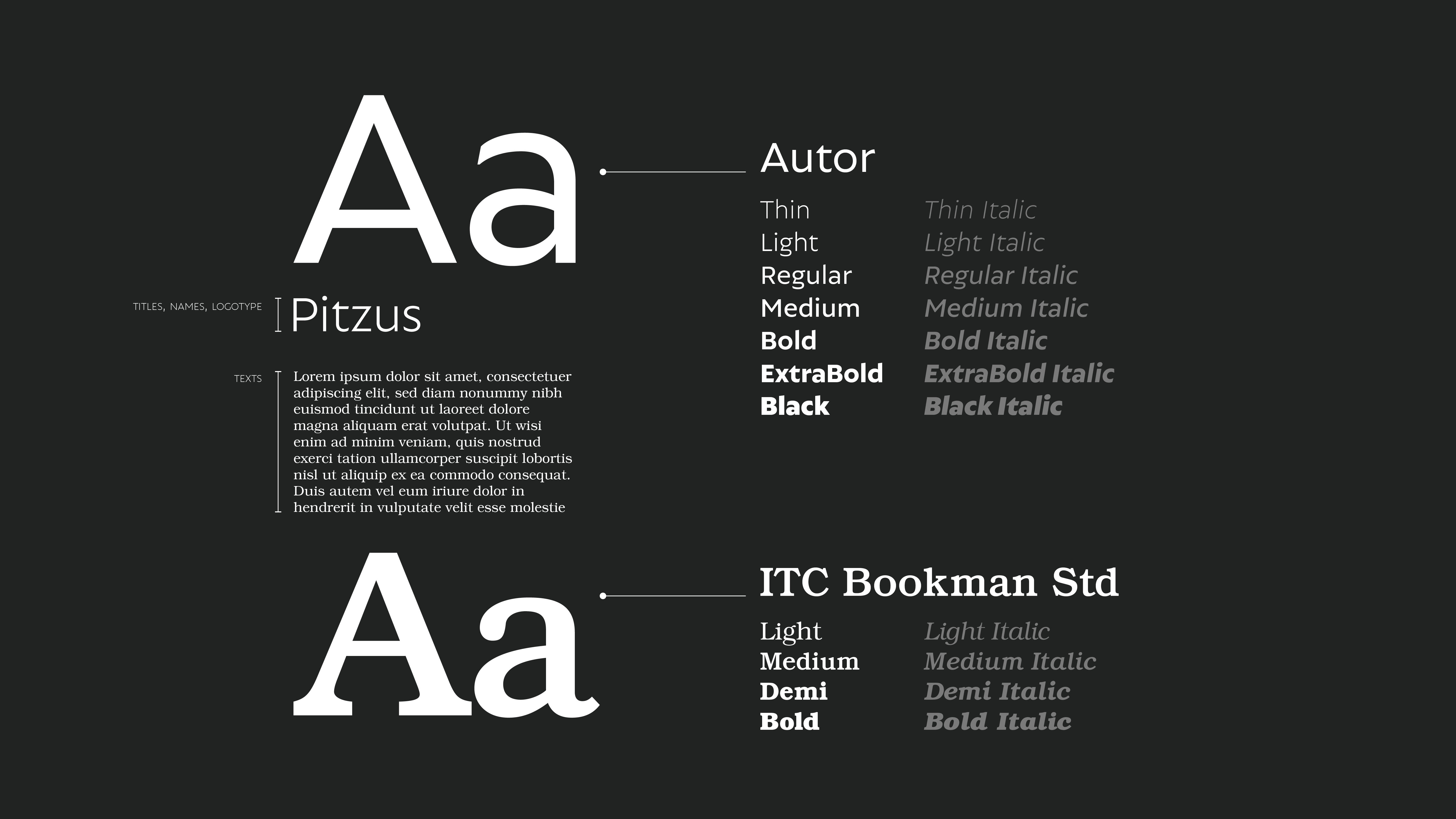Pitzus Group Typography choices@3x